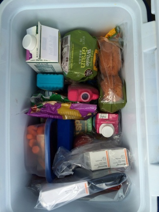 The Cold Cooler holds the back-up supply of insulin, special foods and more.
